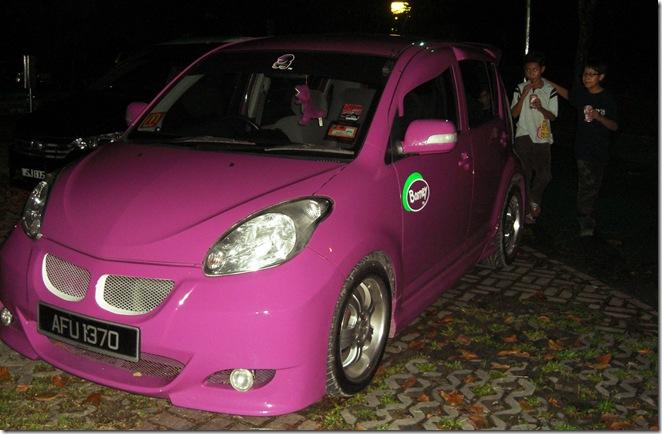cute barney car