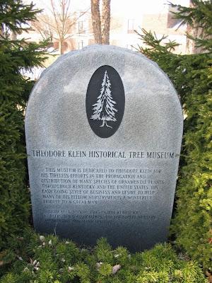 Theodore Klein tree museum marker