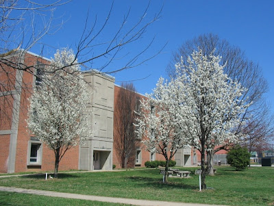 Male High School March 2009