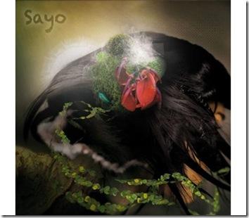 tableau design Sayo Ibride
