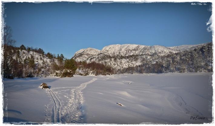 Skidag 1