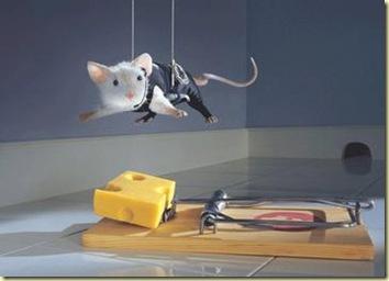 raton-inteligente
