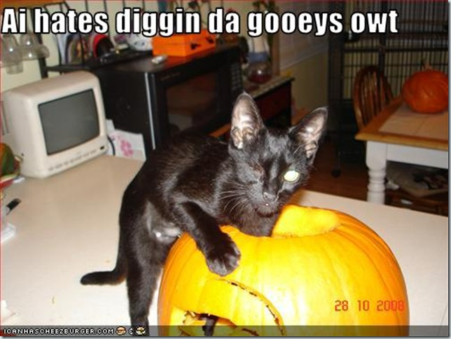 funny-pictures-cat-hates-digging-out-pumpkin-insides