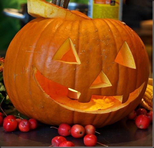 comp_happy  halloween dr