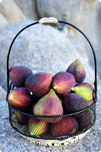 Fresh Figs