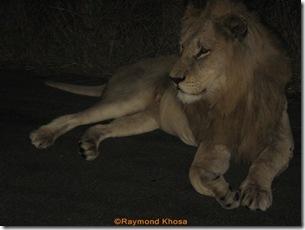 Africa 009
