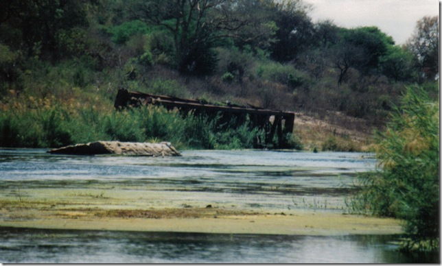 lower sabie croc bridge 4