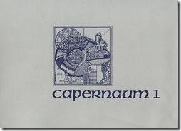 capernaum_book