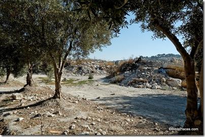 Temple Mount dump, tb090705006