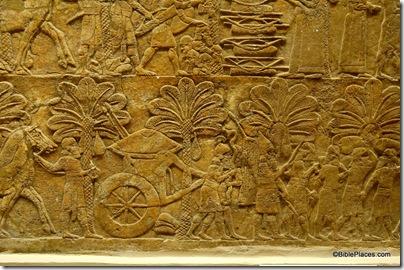 Ashurbanipal after capture of Babylon, tb112004733ddd