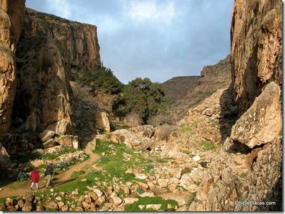 Wadi Qilt near Ein Parat, tb020503961