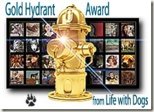 Life With Dogs award