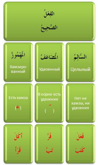 sahih Анатомия Стра... Корня-основы! (Занимательная Сарфология, Шаг № 2)