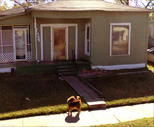 google streetview dog tied to porch