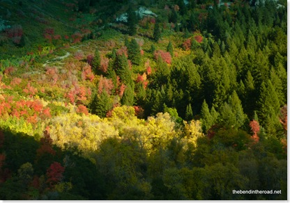 Autumn in Provo Canyon-1