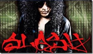 Slash concierto 2011