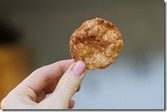 chipClose