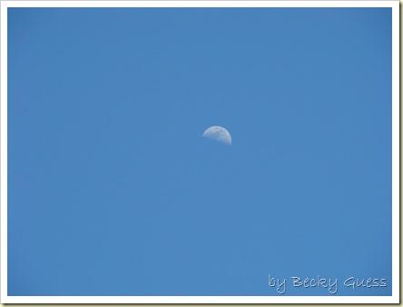 05-20-10 moon 1