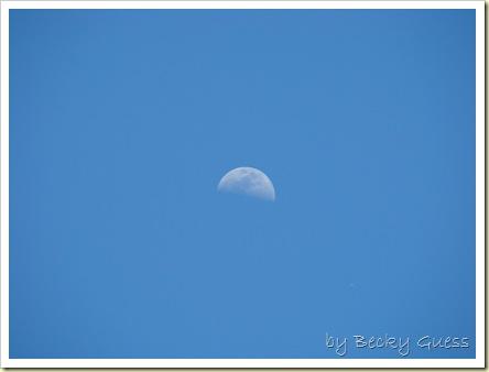 05-20-10 moon 2