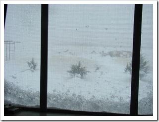 03-27-09 Snow 07