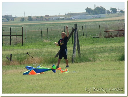 06-08-10 kite flying 01