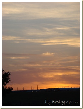 06-03-10 sunset 11