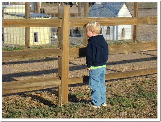 10-20-10 Zane Maxwells Farm 07