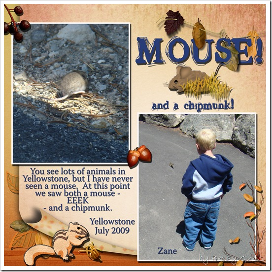 July 09 Yellowstone mouse
