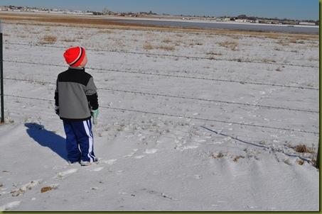 02-07-11 Zane in snow 42