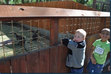 04-28-11 Zoo 045