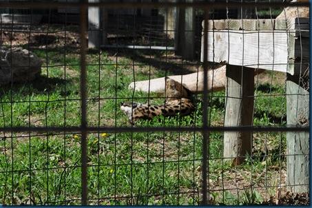 04-28-11 Zoo 047