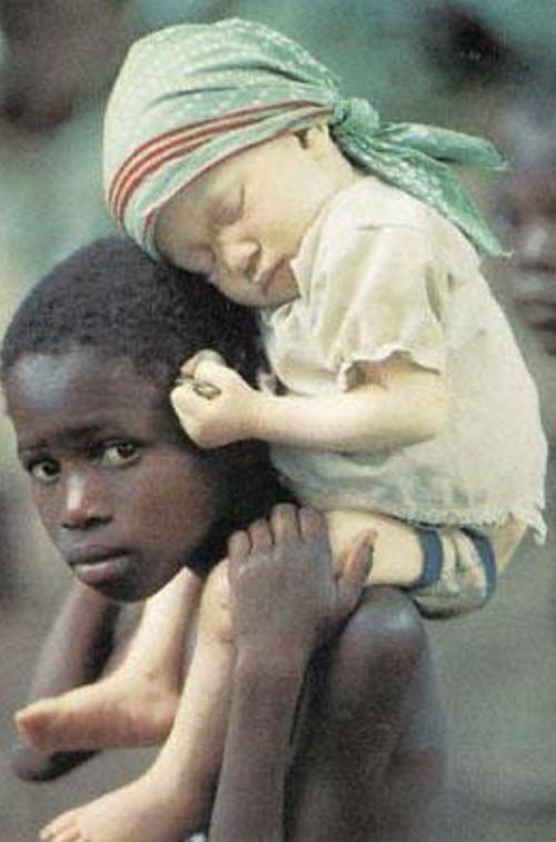 http://lh3.ggpht.com/_xM6S1O620QE/SdvEVC8rZwI/AAAAAAAAKWo/xE6QGuf2suE/s800/Albino%20Animals%20White%2015.jpg