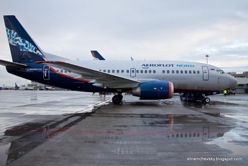 Аэрофлот Норд Боинг Boeing 737 VP-BRI