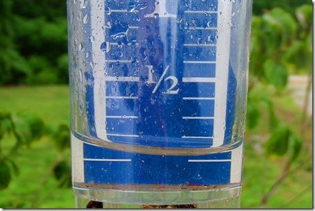 raingauge015