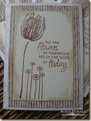 Seed-Card14