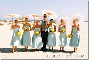 summer wedding shefaly
