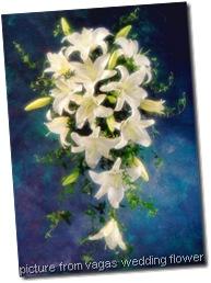 lilycascade
