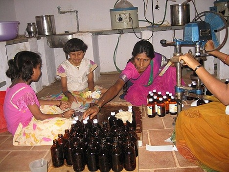 Bottling cow urine products