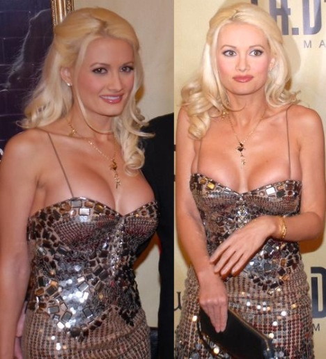 Hugh Hefner ex girlfriend Girl Next Door star Holly Madison pic