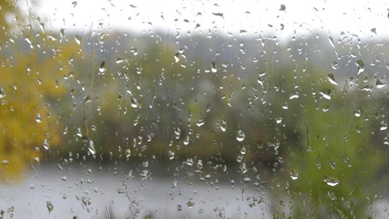Rain Oct 6_3596 for Online