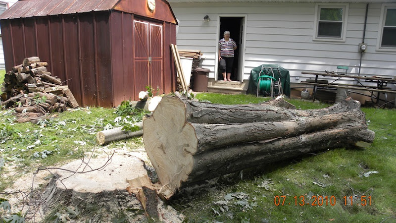 Tree JOb on Langlade (14)