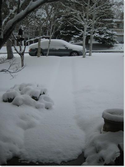2009 March 26  Snow 001