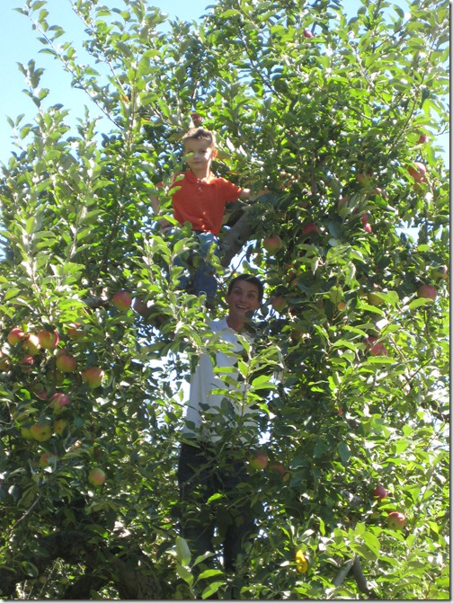 2010-09-11 911, agent, apple picking  3964