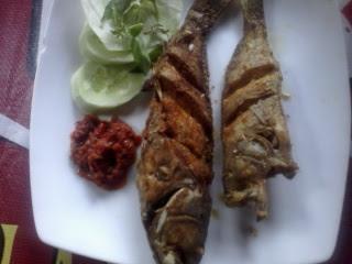Ikan Kerapu Goreng