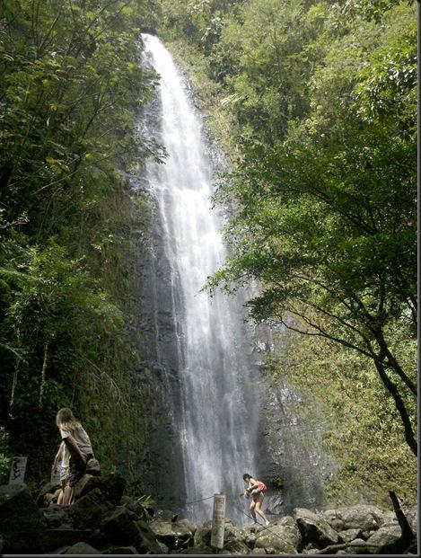 Manoa Falls (15)