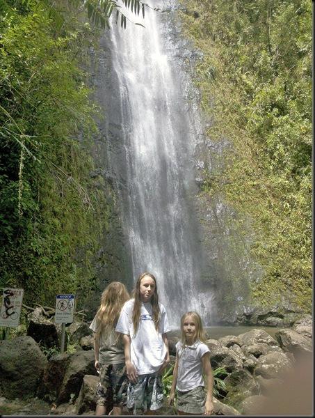 Manoa Falls (16)