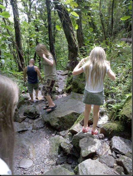 Manoa Falls (22)