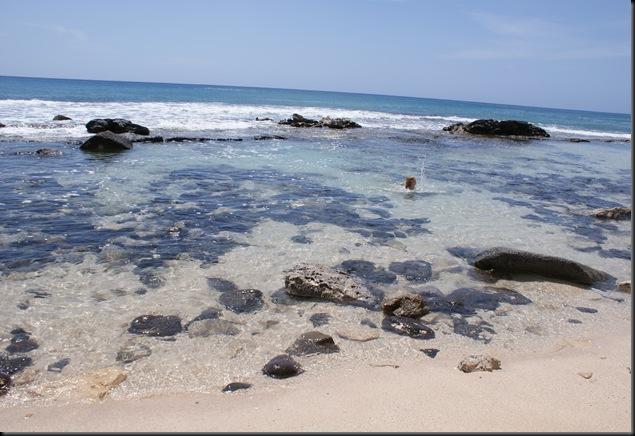 Kaena Beach 014