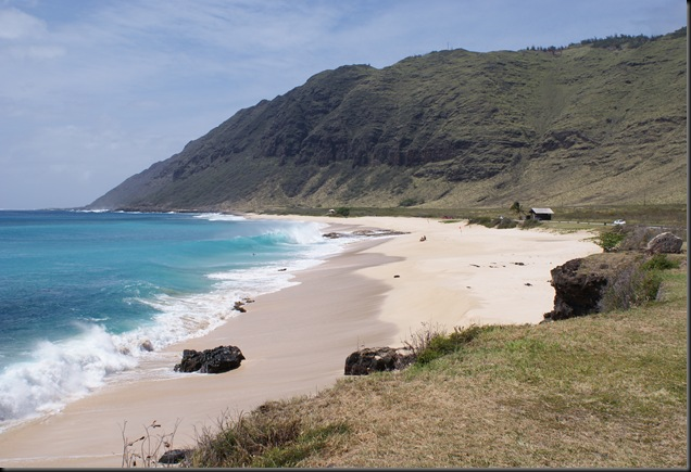 Kaena Beach 065