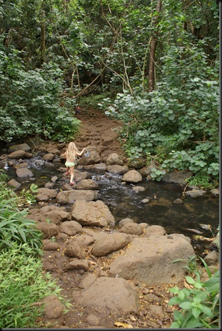Maunawili hike 136
